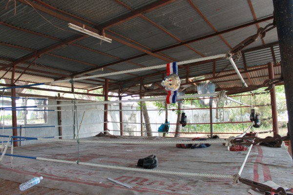 Muay Thai Trainers: Culture and Education