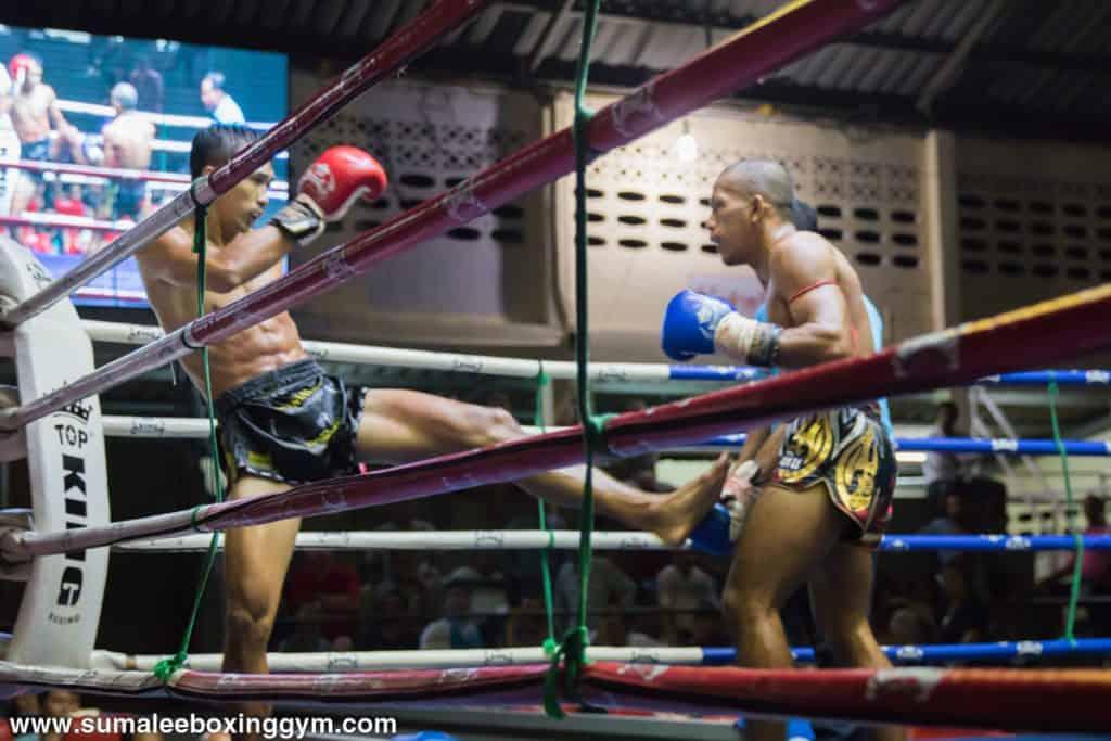 Phunkorn at Patong Boxing Stadium - Body Kick