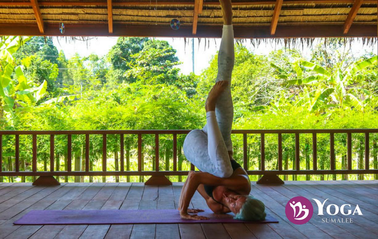 Ying & Yang: Yoga and Muay Thai Success